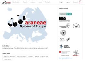 araneae.unibe.ch