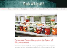 arthropods.yourwildlife.org