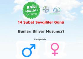 asb14.vidizayn.com