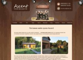 ascent71.ru
