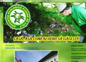 asociatiafloaredecolt.blogspot.ro
