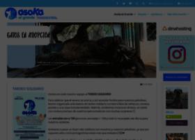 asokaelgrande.org
