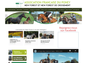 asso-newforest.com