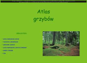 atlasgrzybow.cba.pl