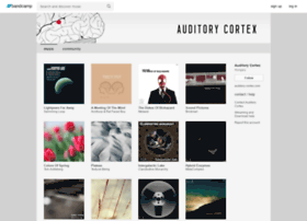 auditory-cortex-records.bandcamp.com