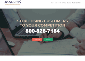 avalonmarketingusa.com