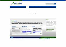 avvasinfotech.com