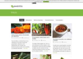 awentis.com