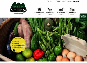 ayahayakawa.com
