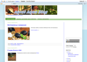 ayrat72.blogspot.com