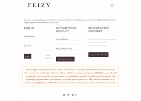 b2b.feizy.com