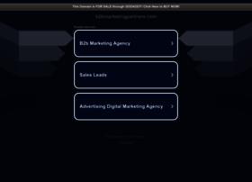 b2bmarketingpartners.com