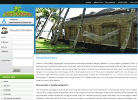backwatertourpackage.com