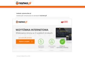 badanie-sprawozdan.pl