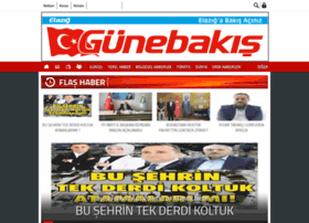 bakishaber.com