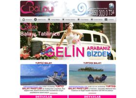 balayiorganizasyon.com