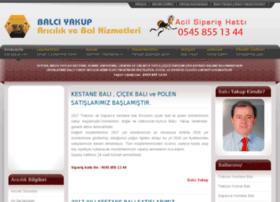 balciyakup.com