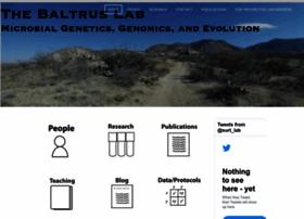 baltruslab.com