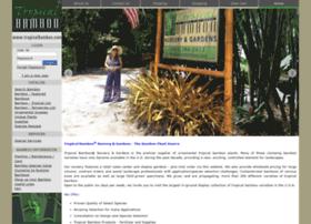 bambooer.com