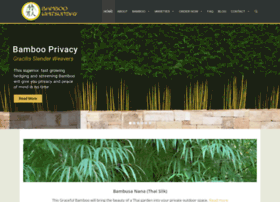 bambooman.com.au