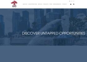 baofinancialgroup.com