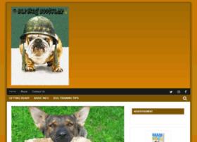 barkingbootcamp.com