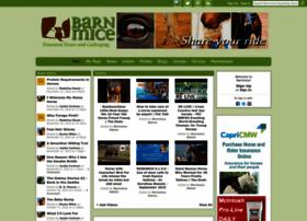 barnmice.com