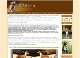 basenji-salonga.ru
