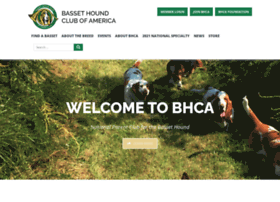 basset-bhca.org