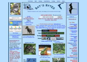 battaly.com