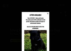 battleroadk9.com