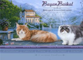 bayanbaikal.com