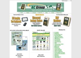 bcgroupintl.com
