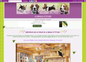 beagle-attitude.com