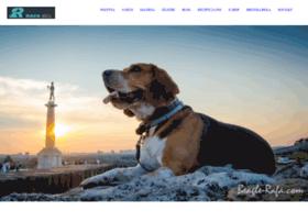 beagle-rafa.com