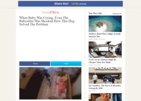beagle.socialchive.com