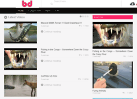 beatsday.com