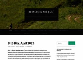 beetlesinthebush.files.wordpress.com