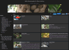bellahummingbird.piwigo.com