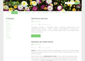 berehyni.com