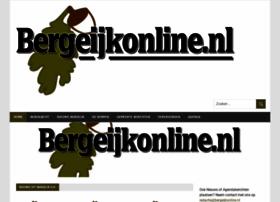 bergeijkonline.nl