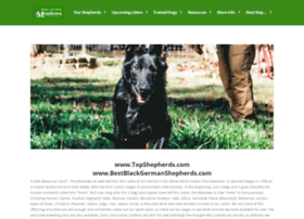 bestblackgermanshepherds.com