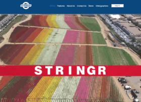 beta.stringr.com