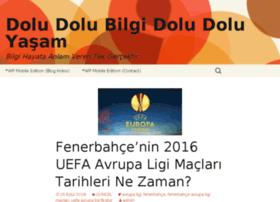 bidolubilgi.com