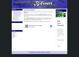 bifinett.com.es