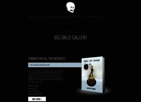 bigbaldbook.com