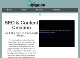 bigfishcontent.com