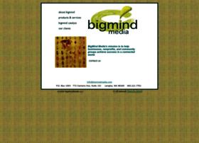 bigmindmedia.com