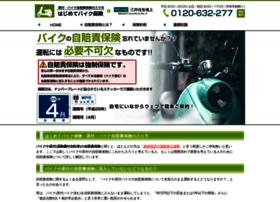 bike-ins.com