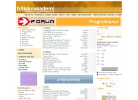 bilisimakademi.net
